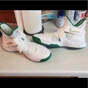 Lebron basketball shoes.